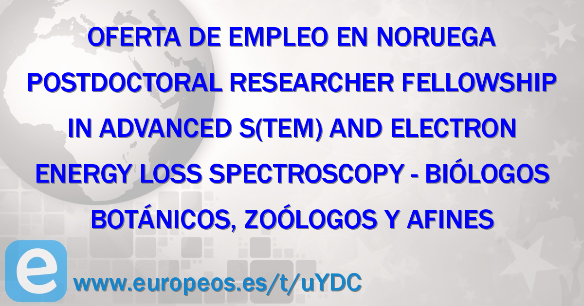 Postdoctoral Researcher Fellowship in Advanced S(TEM) and